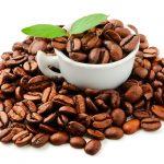 Como o Café Orgânico Vai te Ajudar a Ter mais Disposição no dia a dia de Forma Saudável