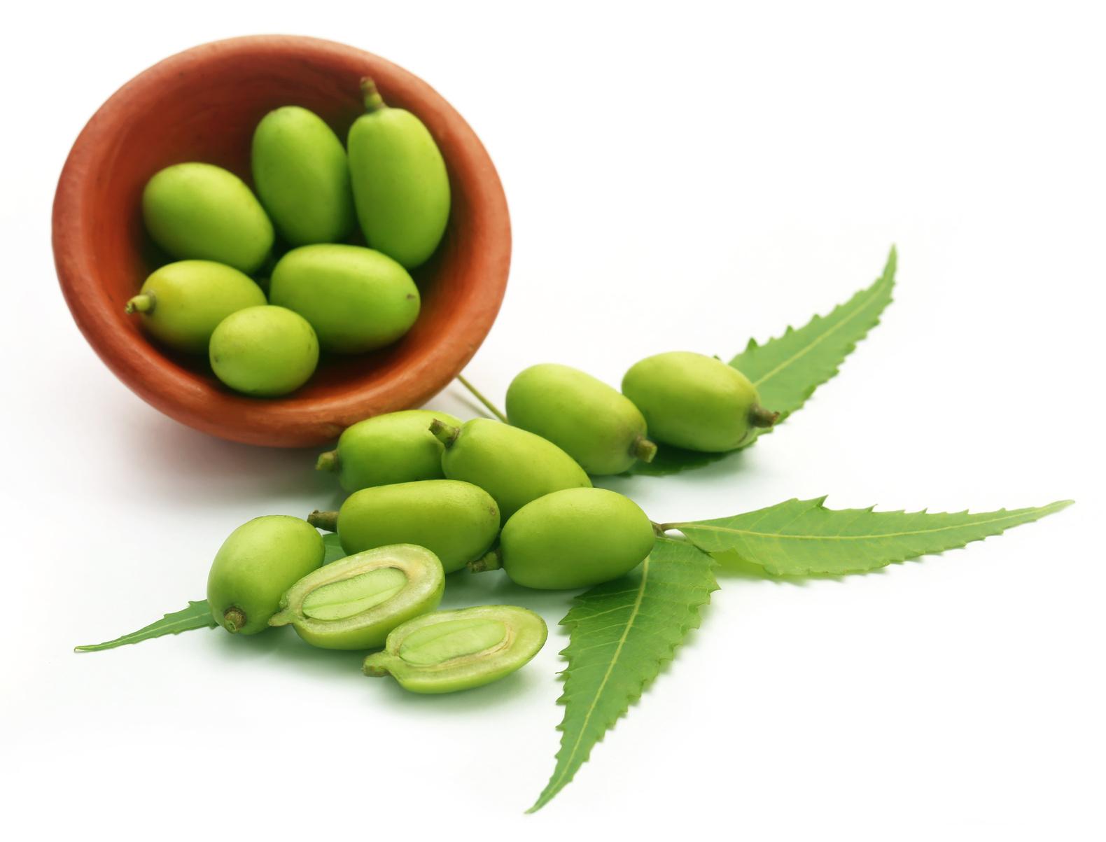 óleo de neem