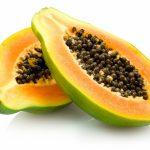 Descubra Como Plantar Mamão Orgânico e Garantir Esse Alimento na Sua Mesa