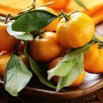 Como Plantar Tangerina Orgânica: Fruta Cítrica que é um Sucesso de Sabor